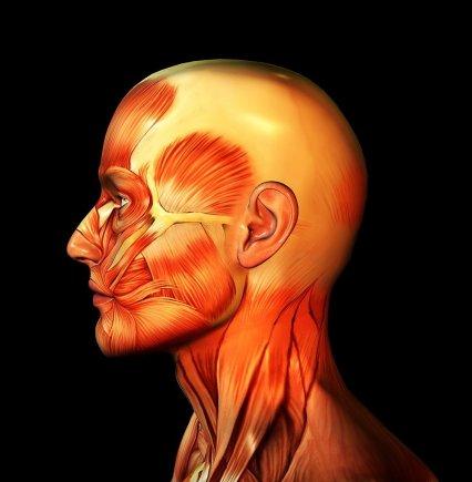 serebrovaskuler hastaliklar klinigi