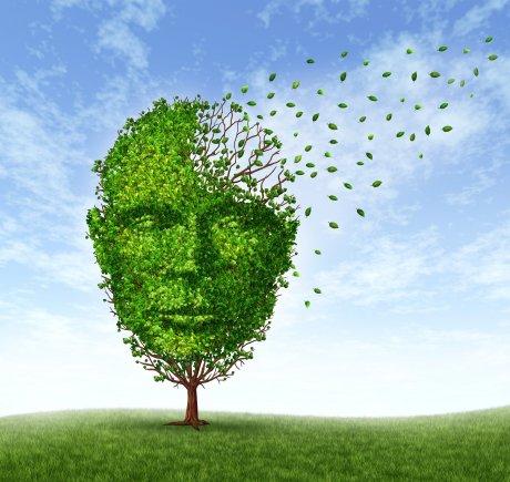 Davranış Nörolojisi ve Demans Kliniği