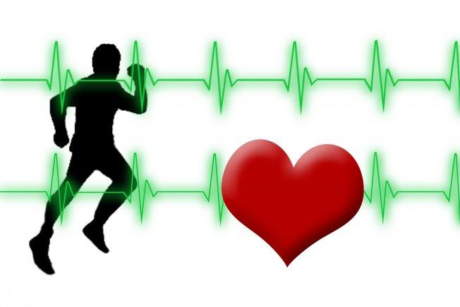 Kalp Kapak Hastalıkları ve Cerrahisi